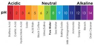 การวัดค่า pH